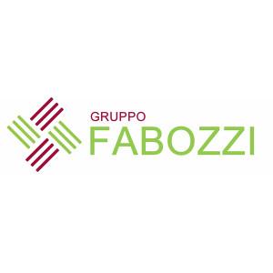 Logo Gruppo Fabozzi